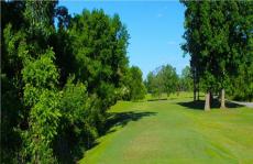 Smyrna Golf Course